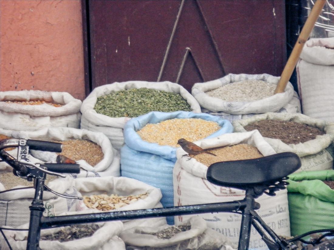 Marocko, Marrakech