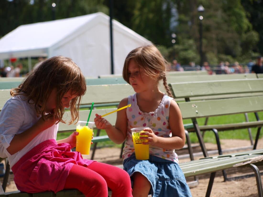 Barnens Dag i Kristianstad