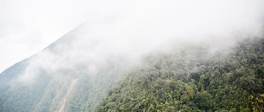 Malysia, Borneo, Kinabalu