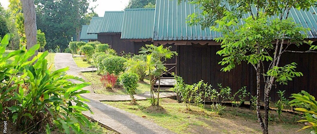 Malysia, Borneo, Kinabatangan