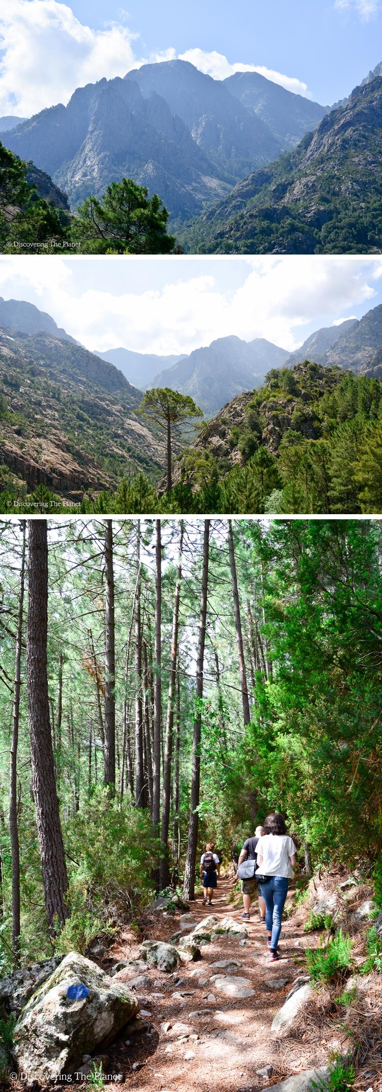 Korsika 15