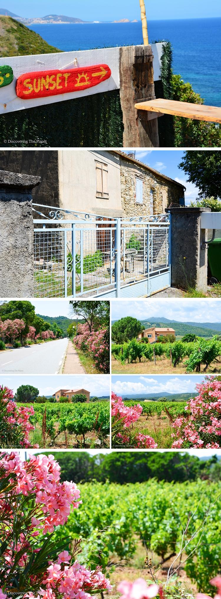 Korsika 38