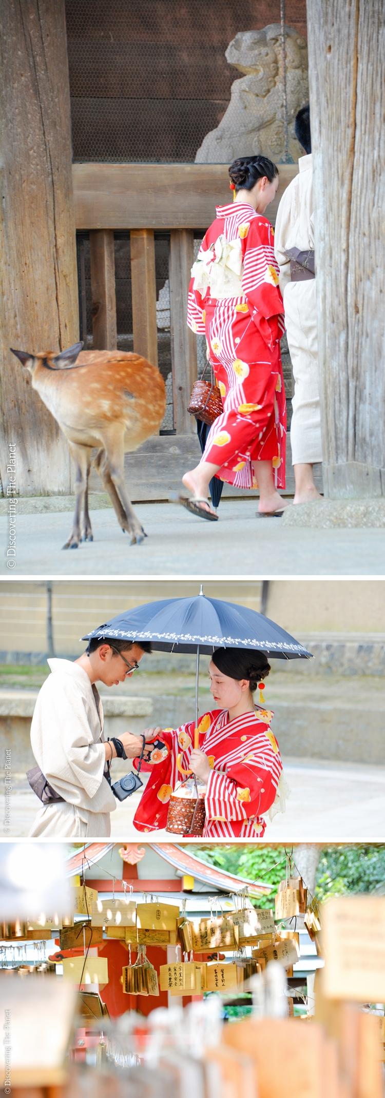 Japan, Nara 7