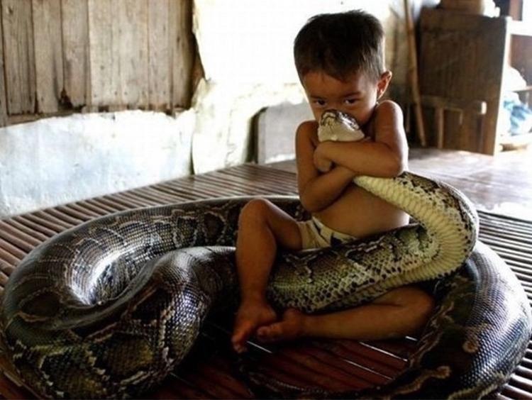 Pojken med orm 2, Bingzhe