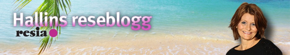 Hallins Reseblogg 1