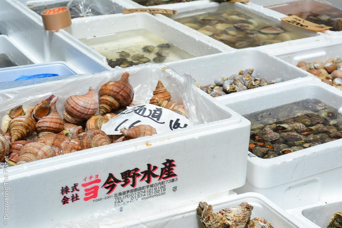 Tokyo, Tsukiji Fish Market (17)