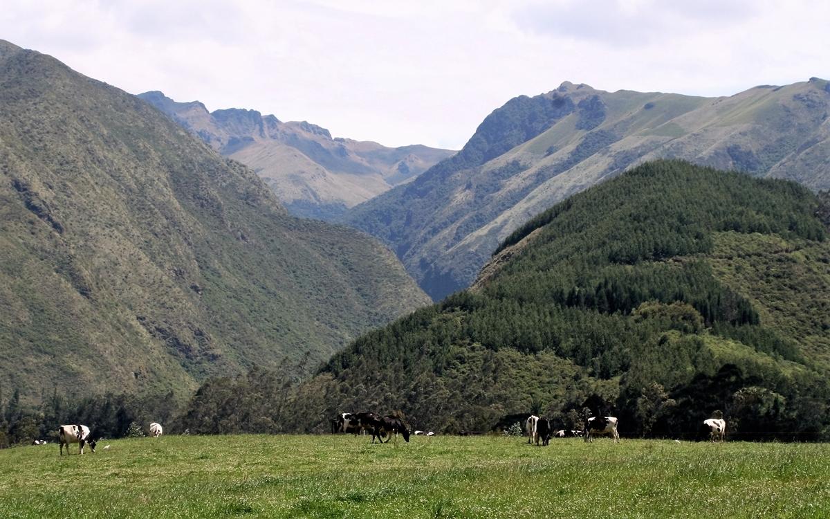 Ecuador, Bland bergen i Ibarra