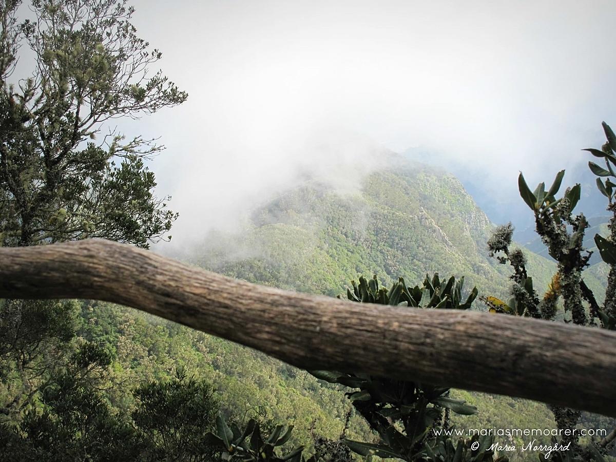 Teneriffa, natur Anaga