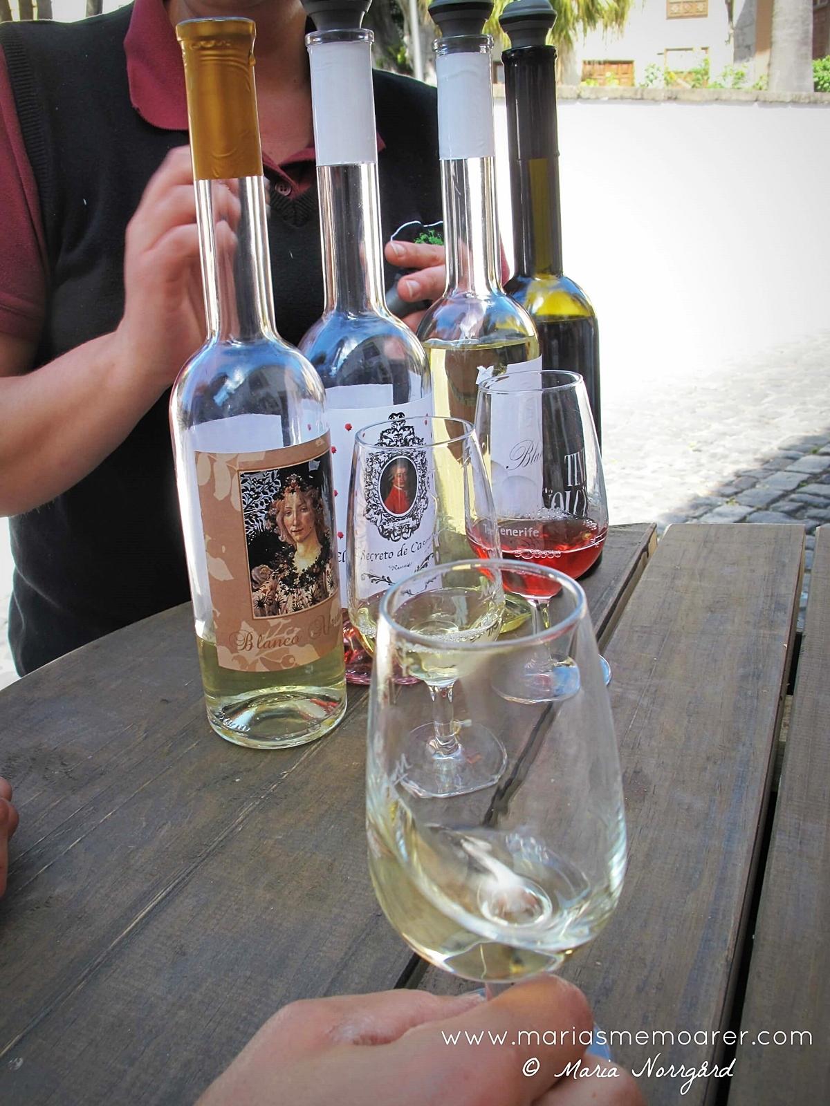 Teneriffa, vinprovning Icod de los Vinos