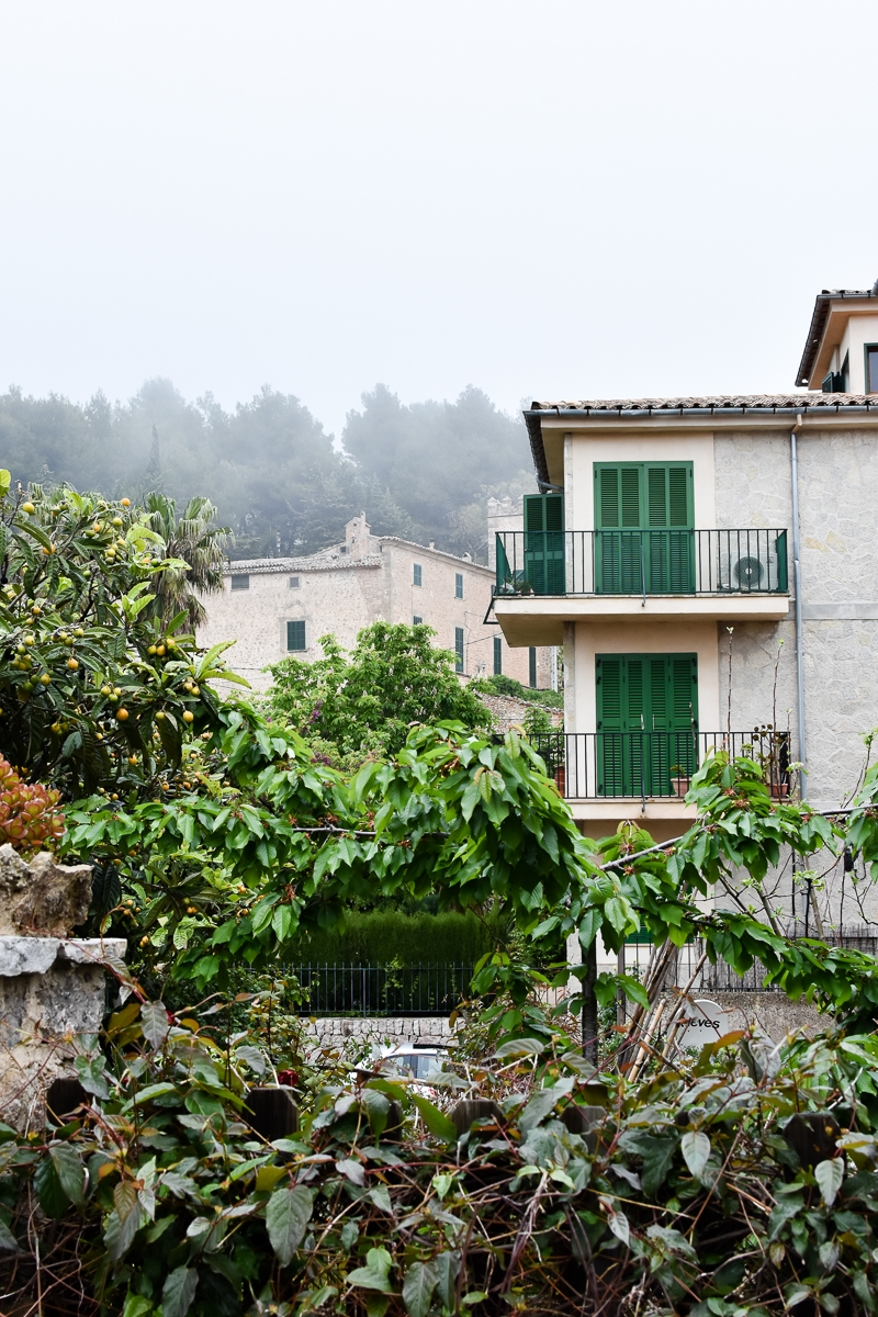 Palma, Valldemossa (12)