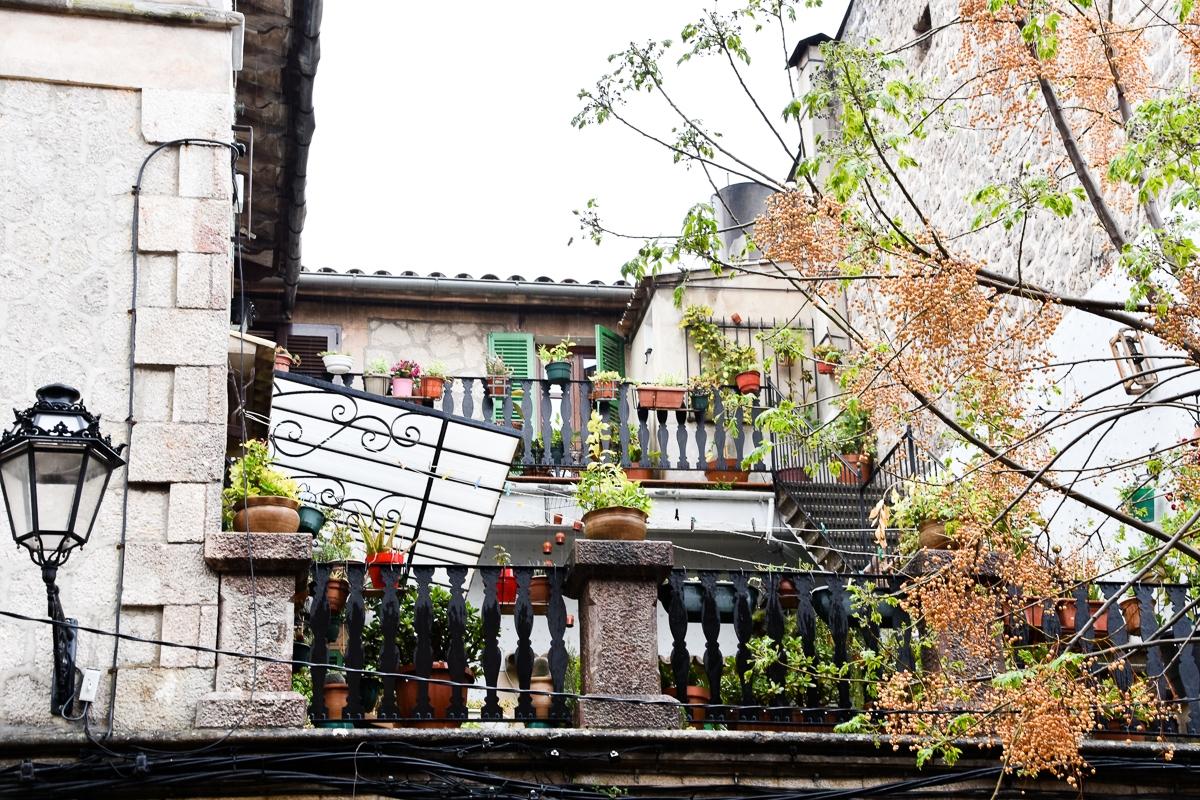 Palma, Valldemossa (34)