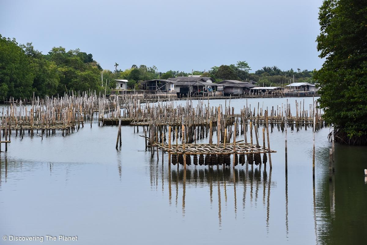 Thailand, Rayong (7)