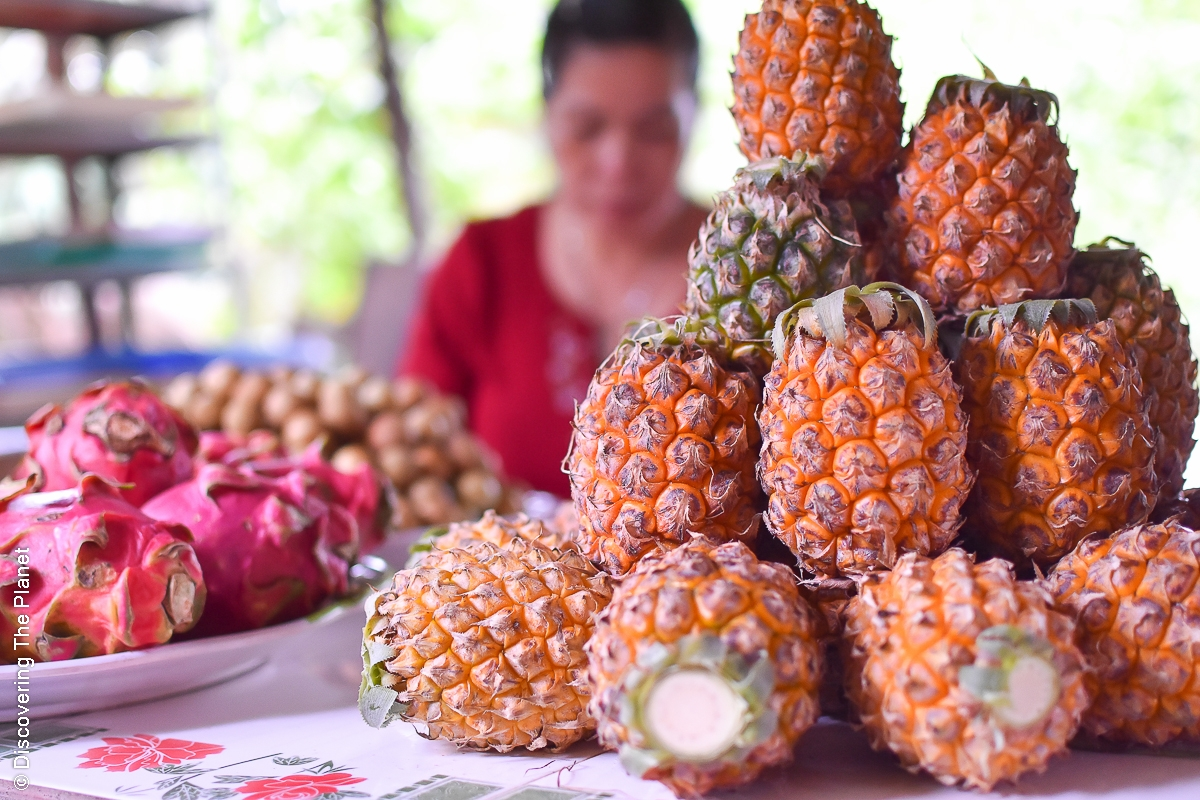 Vietnam, Mekong Deltat (29)