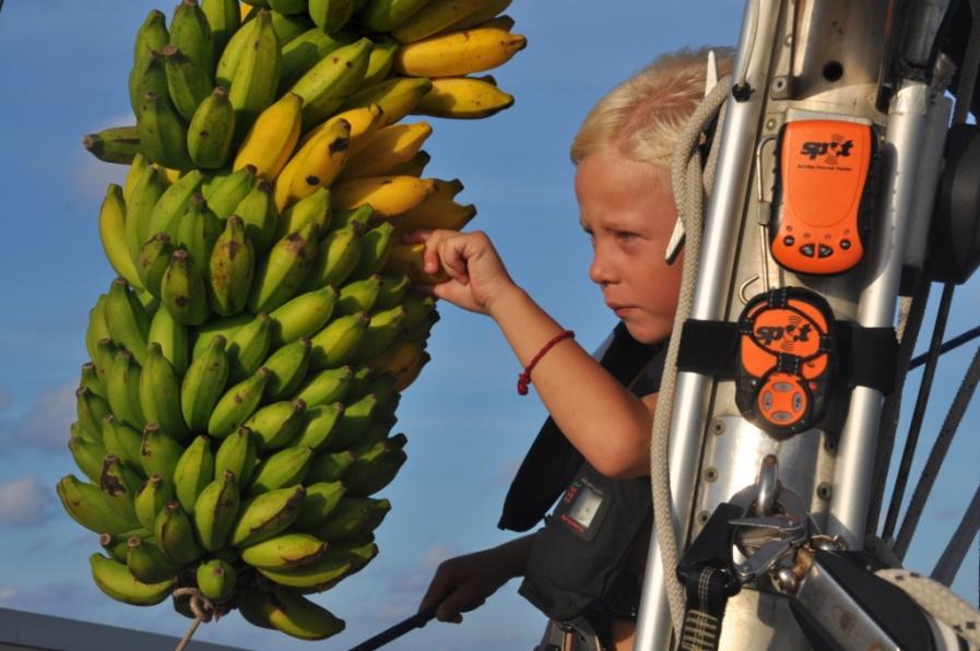 linda-bananer