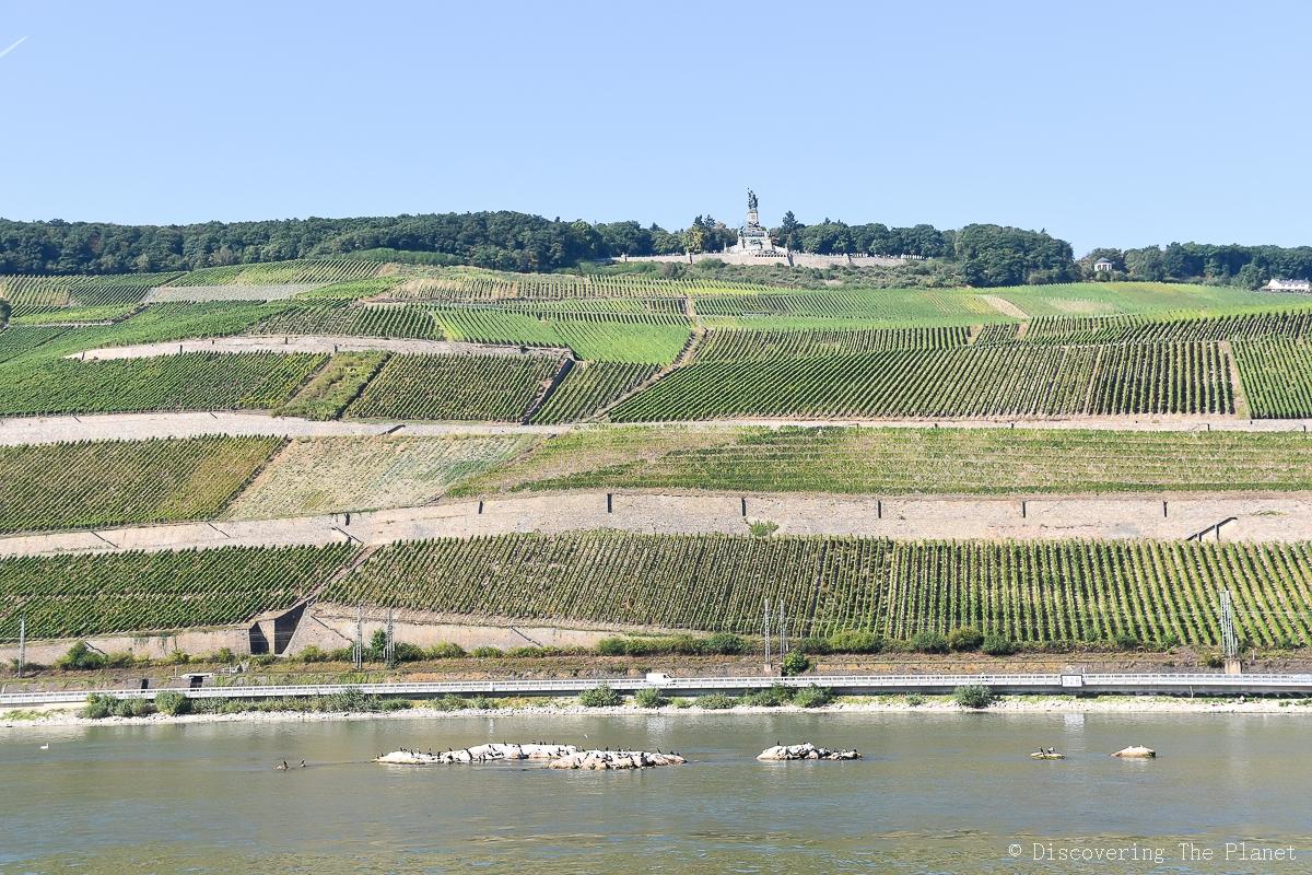 Tyskland, Rheingau, Assmanshausen (9)