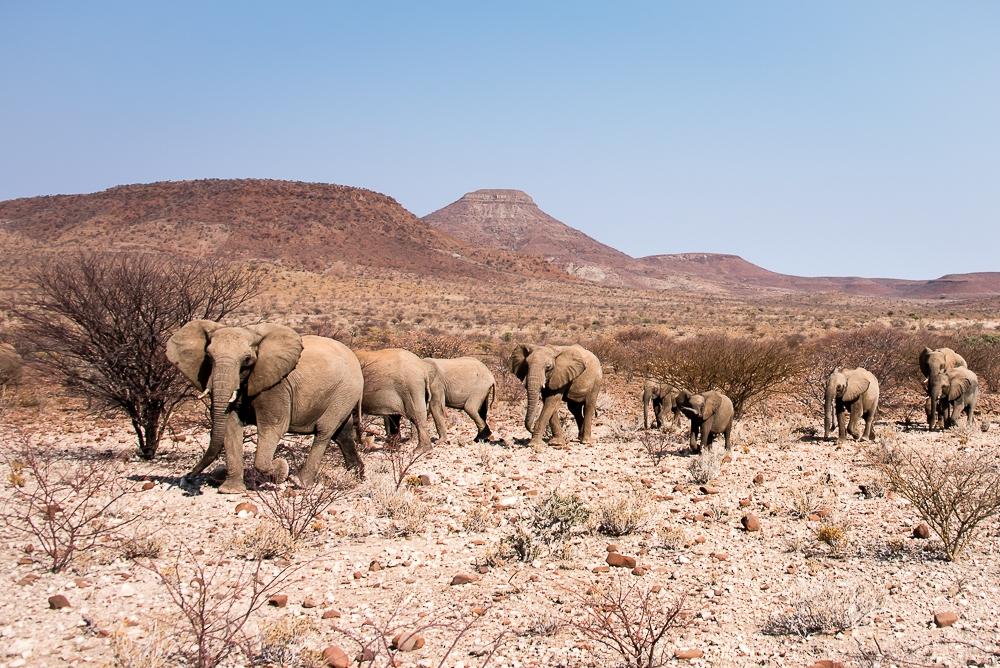 namibia-bild-10