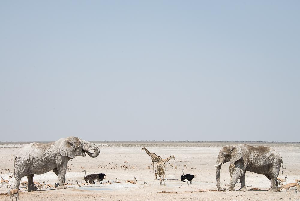 namibia-bild-2