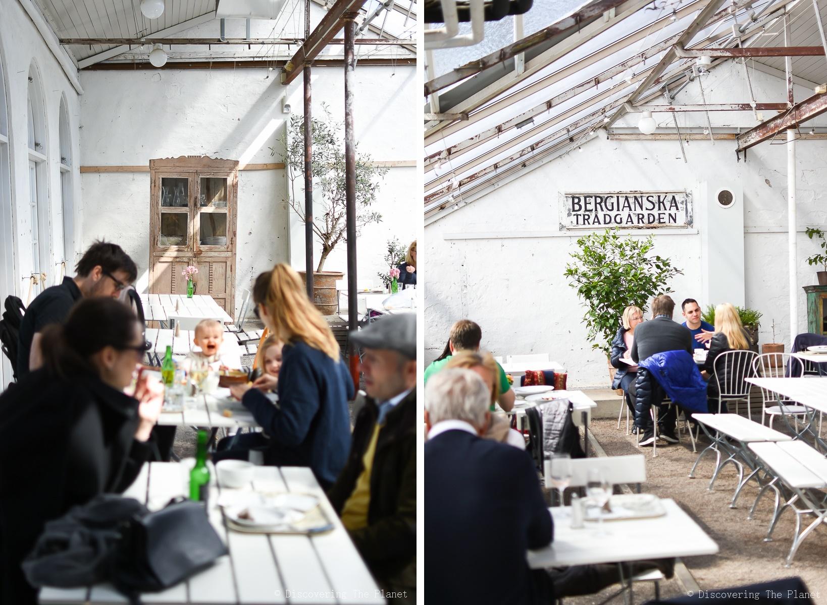 stockholm-bergianska-gamla-orangeriet-15-horz