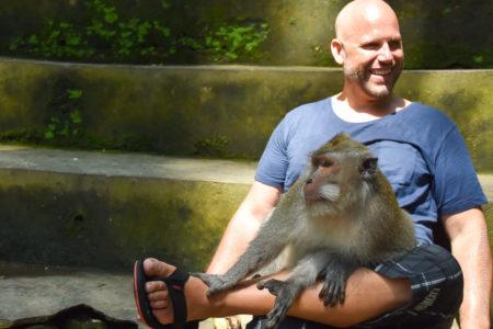 Indonesien, Bali, Ubud, Monkey Forest