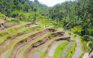 Indonesien, Bali, Teglalang