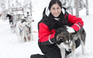 Sverige, Kiruna, Hundspann