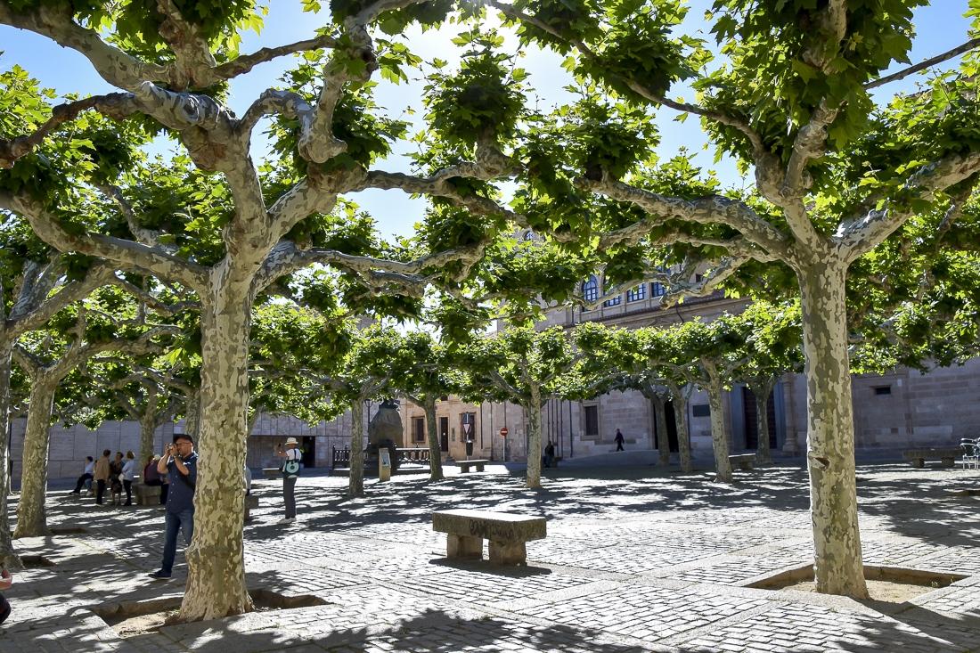 Spanien, Castilla y Leon, Zamora