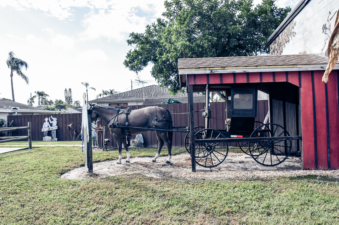 Usa, Florida, Sarasota, Amish