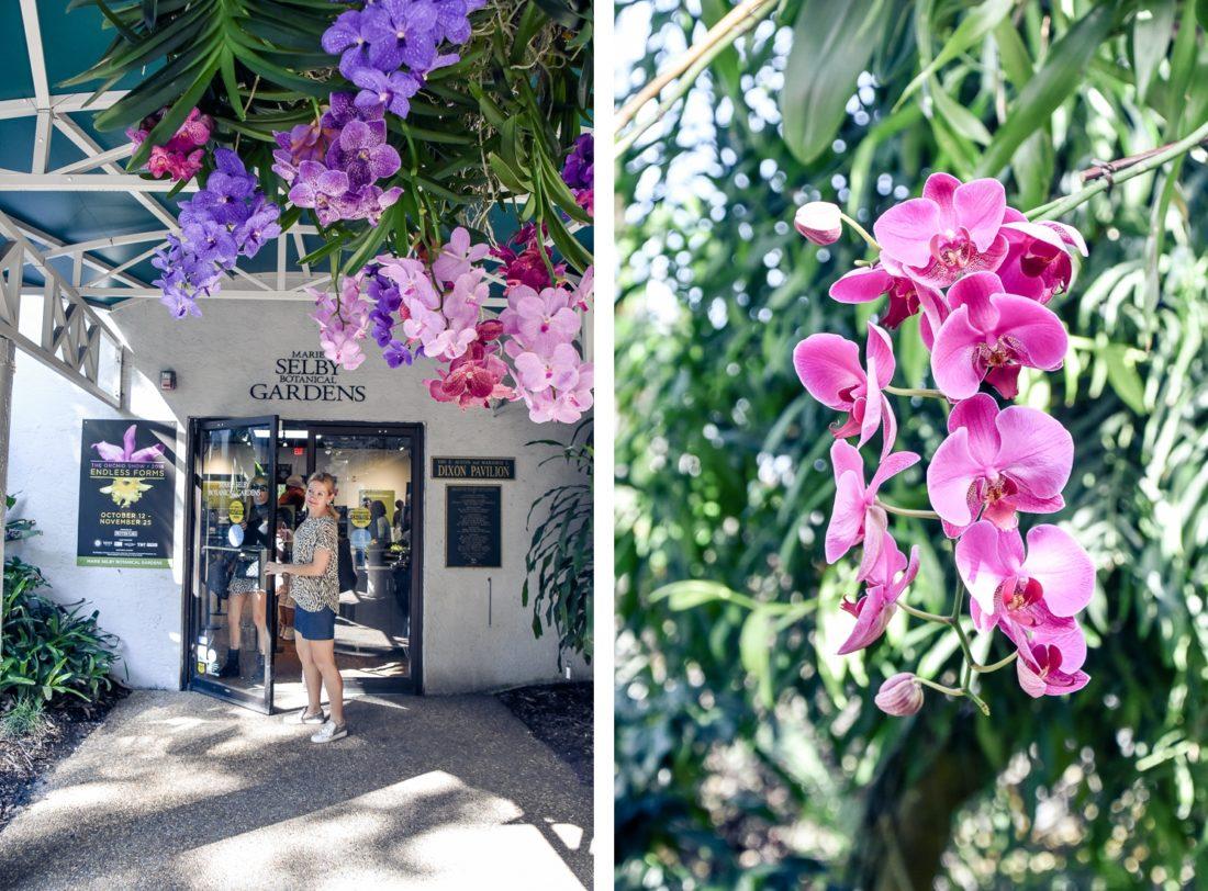 Usa, Florida, Sarasota, Marie Selby Gardens