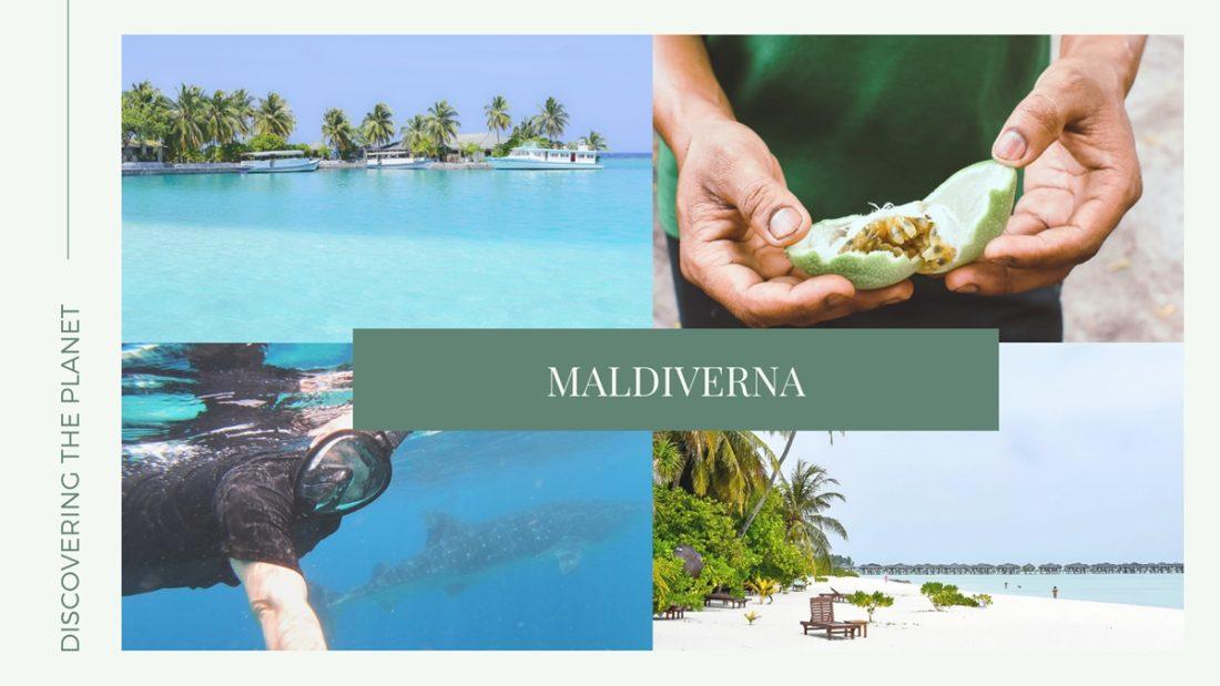 Kategorier, Maldiverna