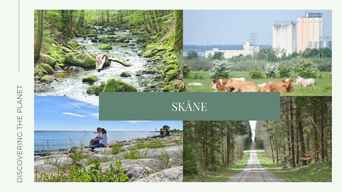 Kategorier, Skåne 1